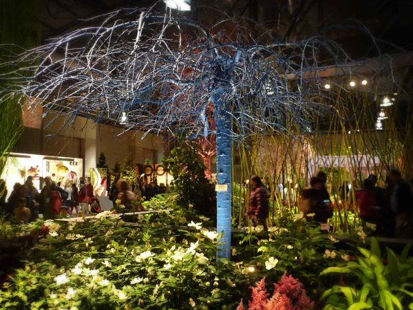 blue-treeweb